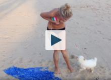 Dog pulling on woman's bikini string