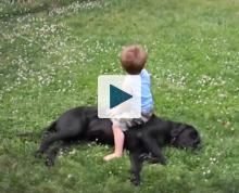 Kid sitting on a dog