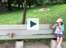 Girl and squirrel on a bench