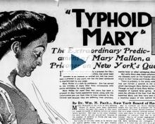 News clipping about typhoid Mary Mallon